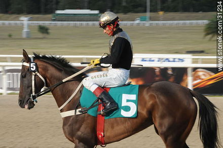 January 6, 2009.  - Photos of Maroñas horse racetrack - Department and city of Montevideo - URUGUAY. Image #31234