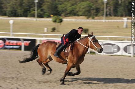 January 6, 2009. Prize J.P. Ramírez. - Photos of Maroñas horse racetrack - Department and city of Montevideo - URUGUAY. Image #31249