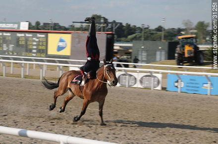 January 6, 2009. Prize J.P. Ramírez. - Photos of Maroñas horse racetrack - Department and city of Montevideo - URUGUAY. Image #31251