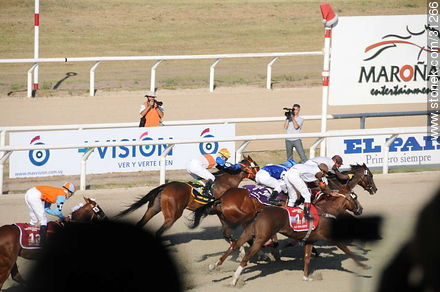 January 6, 2009.  - Photos of Maroñas horse racetrack - Department and city of Montevideo - URUGUAY. Image #31266