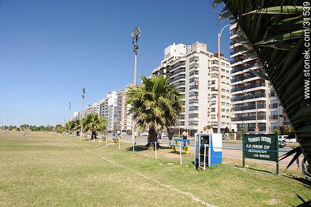 Mahatma Gandhi Avenue - Photos of  Punta Carrretas quarter - Department and city of Montevideo - URUGUAY. Image #31539