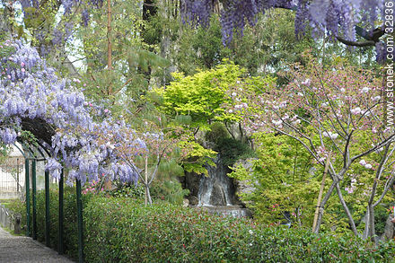 Montevideo Japanese Garden. - Photos of Japanese Garden at Prado quarter - Department and city of Montevideo - URUGUAY. Image #32836