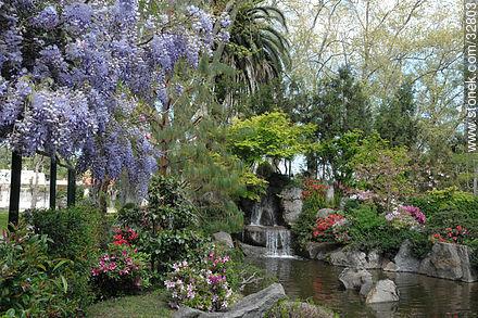 Glicinas en el jard n japon s stonek fotograf a foto Jardin japones informacion