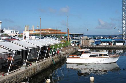 Port of Punta del Este - Photographs of the port of Punta del Este - Punta del Este and its near resorts - URUGUAY. Image #34026