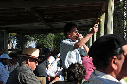 Ranching auction. - Photos of rural area of Colonia - Department of Colonia - URUGUAY. Image #34929