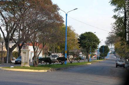 Dr.  Zemiramides Zeballos Ave. - Photos of Young city - Rio Negro - URUGUAY. Image #35076