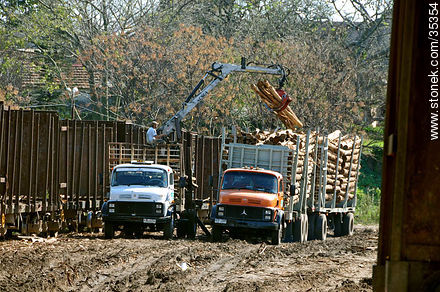 Moving trunks from freight wagon to trucks for the cellulose plant - Photos of Fray Bentos - Rio Negro - URUGUAY. Image #35354