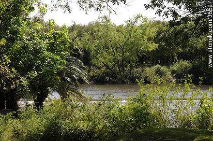 Prado de la Piedra Alta. Santa Lucía Chico river. - Photo of Florida city - Department of Florida - URUGUAY. Image #35597