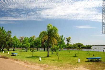 Rivera park is on the banks of the Uruguay river. - Photos of Bella Unión - Artigas - URUGUAY. Image #36327