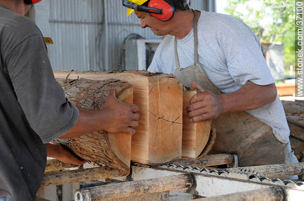 Timber industry - Photos of Paysandú industry - Department of Paysandú - URUGUAY. Image #37100