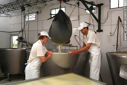 Family cheese factory - Photos of cheese industry - Department of Colonia - URUGUAY. Image #37647