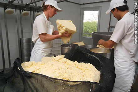 Family cheese factory - Photos of cheese industry - Department of Colonia - URUGUAY. Image #37643