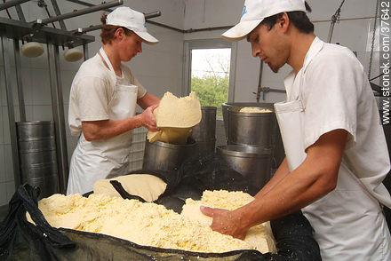 Family cheese factory - Photos of cheese industry - Department of Colonia - URUGUAY. Image #37642