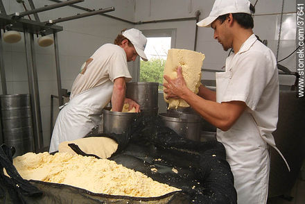 Family cheese factory - Photos of cheese industry - Department of Colonia - URUGUAY. Image #37641
