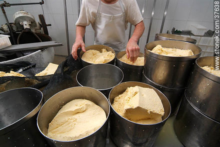 Family cheese factory - Photos of cheese industry - Department of Colonia - URUGUAY. Image #37638