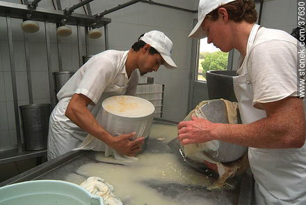 Family cheese factory - Photos of cheese industry - Department of Colonia - URUGUAY. Image #37630