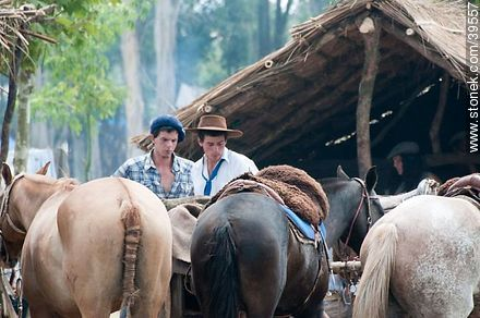 Young men between horses - Photos of Patria Gaucha festivity - Tacuarembo - URUGUAY. Image #39557