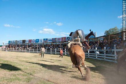 Riding a wild horse - Photos of Patria Gaucha festivity - Tacuarembo - URUGUAY. Image #39931
