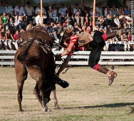 Riding a wild horse - Photos of Patria Gaucha festivity - Tacuarembo - URUGUAY. Image #39871