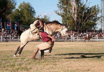 Riding a wild horse - Photos of Patria Gaucha festivity - Tacuarembo - URUGUAY. Image #39861