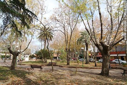 Plaza de Las Piedras. - Photos of city of Las Piedras - Department of Canelones - URUGUAY. Image #43007