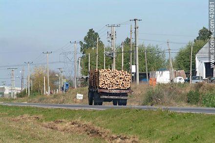 Truck carrying logs - Photos of Toledo - Department of Canelones - URUGUAY. Image #43081
