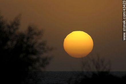 Giant sunset sun - Photos of Piriapolis - Department of Maldonado - URUGUAY. Image #43423