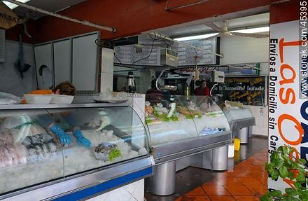 Fish market. - Photos of Buceo quarter - Department and city of Montevideo - URUGUAY. Image #45395