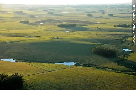 Rocha fields at dawn - Photos of views of State of Rocha - Department of Rocha - URUGUAY. Image #46876