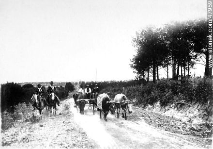 Uruguayan countryside in the early twentieth century - Uruguayan old photos and drawings - URUGUAY. Image #47959