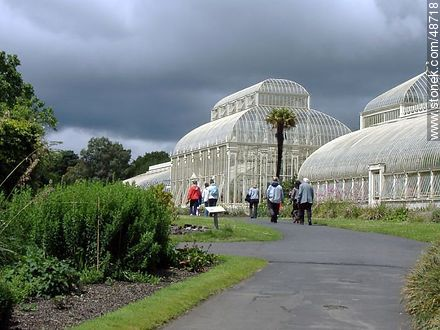 Botanical Garden of Dublin. Greenhouses. - Photos of Dublin - Ireland - BRITISH ISLANDS. Image #48718