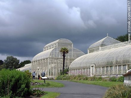 Botanic Gardens of Dublin. Glasshouses. - Photos of Dublin - Ireland - BRITISH ISLANDS. Image #48717