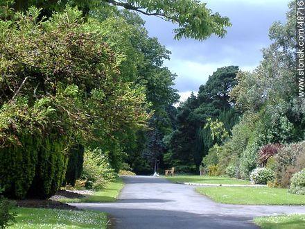 Botanical Garden of Dublin.  - Photos of Dublin - Ireland - BRITISH ISLANDS. Image #48716