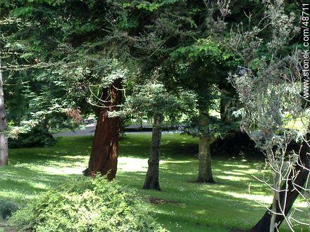 Botanical Garden of Dublin.  - Photos of Dublin - Ireland - BRITISH ISLANDS. Image #48711