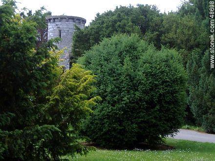 Botanical Garden of Dublin - Photos of Dublin - Ireland - BRITISH ISLANDS. Image #48698