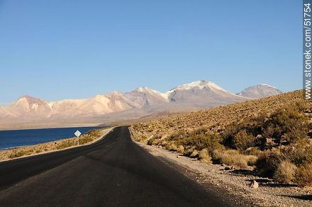 Lake Chungará and Nevados de Quimsachata. Route 11 in Chile. - Photos of the Province of Parinacota - Chile - Others in SOUTH AMERICA. Image #51754
