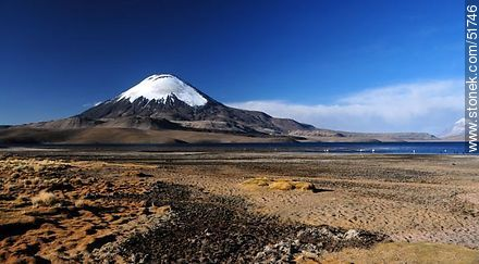 Parinacota volcano, lake Chungará. - Photos of the Province of Parinacota - Chile - Others in SOUTH AMERICA. Image #51746