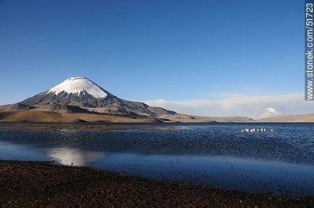 Parinacota volcano. Sajama volcano, lake Chungará. - Photos of the Province of Parinacota - Chile - Others in SOUTH AMERICA. Image #51723