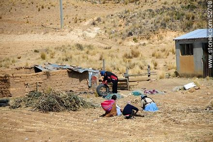 Farm work - Photos on Lake Titicaca in Bolivia - Bolivia - Others in SOUTH AMERICA. Image #52708