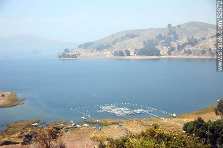 Trout breeding farm in Lake Titicaca - Photos on Lake Titicaca in Bolivia - Bolivia - Others in SOUTH AMERICA. Image #52672