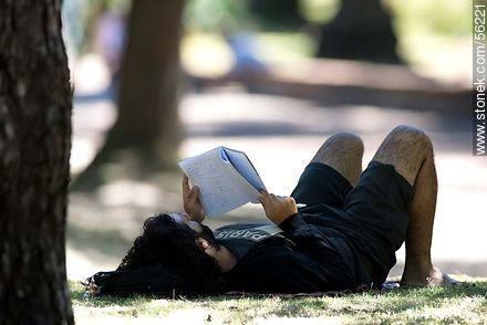 Boy studying in the shade of a tree - Photos of Parque Rodo and Playa Ramirez - Department and city of Montevideo - URUGUAY. Image #56221