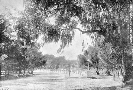 One of the entrances of the Paseo del Prado. 1909 - Photos of Old Montevideo (2), URUGUAY. Image #59817