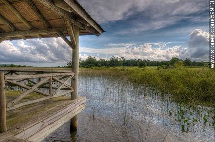 Covered dock on the lake - Photos of Laguna del Sauce - Punta del Este and its near resorts - URUGUAY. Image #59913