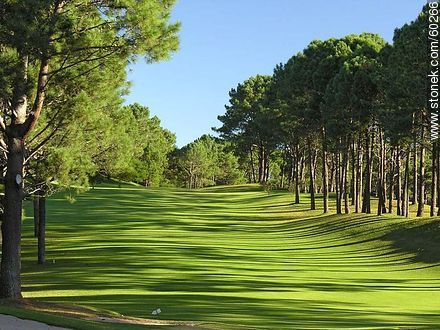 Park Golf Club - Photos of Laguna del Sauce, URUGUAY. Image #60266