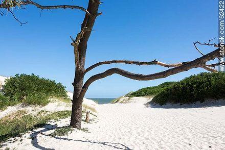 Access to Pinamar Beach - Photos of Ciudad de la Costa - Department of Canelones - URUGUAY. Image #62422