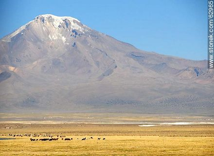 Mountains in the Sajama Park - Photos of Departmant of La Paz - Altiplano, Others in SOUTH AMERICA. Image #62965