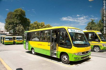 Metrobus Buses bound for Quillota and La Calera - Photos of Limache - Chile - Others in SOUTH AMERICA. Image #64449