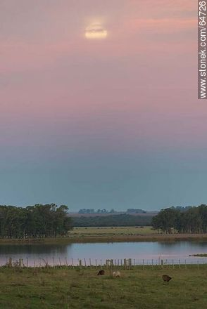 Full moon in the field at sunset - Photos of the rural area of Tacuarembó - Tacuarembo - URUGUAY. Image #64726
