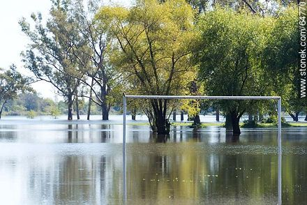 Río Negro overgrown. Football area flooded - Photos of the City of Mercedes, URUGUAY. Image #64770