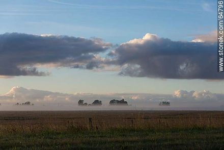 Sunrise with fog on the field - Photos of the rural area of Tacuarembó - Tacuarembo - URUGUAY. Image #64796